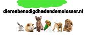Logo Dierenbenodigdheden de Molosser